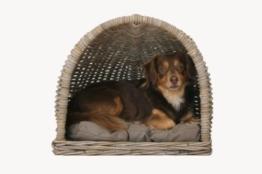 Hundekorb Katzenkorb halbrund mit Kissen