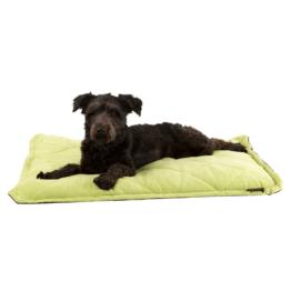 Oster Hundekissen Self-Warming Grün