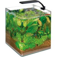 Amtra WAVE Box Cubo Orion Orion 25