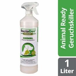 BactoDes Animal Ready - Geruchsentferner Fleckenentferner Spray, Gebrauchsfertig, Enzymreiniger gegen Katzenurin, Hundeurin, Tiergerüche, 1 Liter - 1