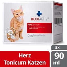RECOACTIV® Herz Tonicum für Katzen, 3 x 90 ml, Herz Nahrungsergänzungsmittel für Katzen in der Rekonvaleszenz bei Herzinsuffizienz mit Taurin, Carnitin Omega-3-Fettsäuren und Weißdorn - 1