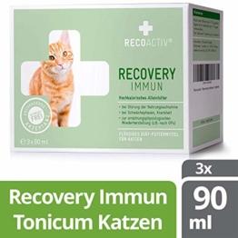 RECOACTIV® Recovery Immun für Katzen 3 x 90 ml - Hochkalorisches Diät Alleinfuttermittel, in der Rekonvaleszenz und nach OPs, für Gewichtszunahme sowie bei Nahrungsverweigerung - 1