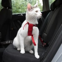 Trixie Auto-Geschirr für Katzen - rot