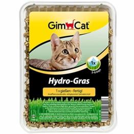 GimCat Hydro-Gras - Frisches Katzengras aus kontrolliertem Feldanbau in nur 5 bis 8 Tagen - 1 Schale (1 x 150 g) - 1