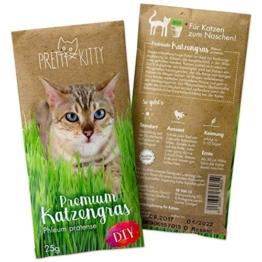 PRETTY KITTY Premium Katzengras Samen: 1 Beutel mit 25g Saatmischung für 10 Töpfe fertiges Katzengras zum Naschen – eine grüne Katzen Wiese mit 1x25g Katzengrassamen, Katzen Geschenk – Pflanzen Samen - 1