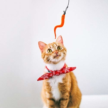UEETEK 5 Stück Katze Wurm Teaser und Exerciser,Teaser Nachfüllungen Spielzeug Katze Winkel Ersatz für Kätzchen Katze Wand - 3