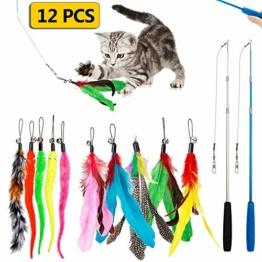 Interaktives Katzenspielzeug Spielzeug mit Federn, Teaser mit 2 Skalierbar Stangen 10 Katzenangel Ersatzfedern mit Anhänger Feder Glocke Befestigungen, Katzenspielzeug Set für Kätzchen und Katzen - 1